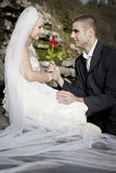 Big day. Husband gives his newly wed wife a red rose Stock Images