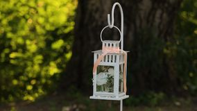 Wedding lantern in the forest stock video footage