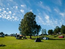 A big deciduous tree with tents. Summer in camp. A big deciduous tree with tents during sunny weather with few small clouds. Summer in camp. Norway, Europe stock image