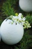 Big decorative egg Stock Photos