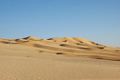 The big desert. In Oman Royalty Free Stock Photos