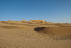 The big desert. In Oman Stock Image