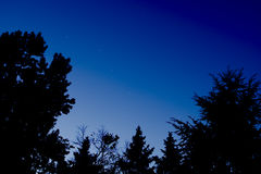 Big Dipper early evening Stock Photography
