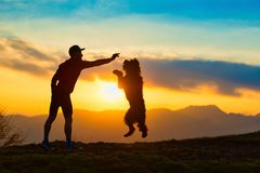 Big dog jumping to take a biscuit from a man silhouette with bac. Kground at colorful sunset mountains Stock Photography