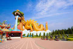 Big dragon at Dragon descendants public museum. With blue sky background at Suphanburi city, Thailand Royalty Free Stock Photography