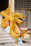 A big dragon statue at thailand Stock Image