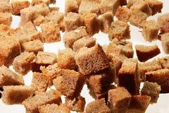 Big dried crust Stock Image