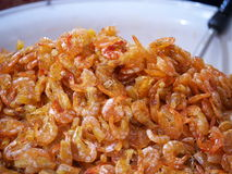 Big Dried shrimp. Royalty Free Stock Images