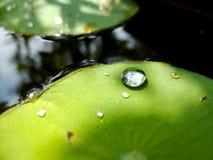 Big drop water Stock Image