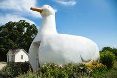 Free Big Duck Royalty Free Stock Image - 32440496