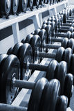 Big dumbbell on a stand Royalty Free Stock Photos
