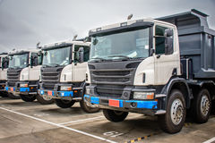 photo of brand new dump trucks, to use in construction site stock photo
