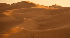 Big dune in the desert Royalty Free Stock Photos