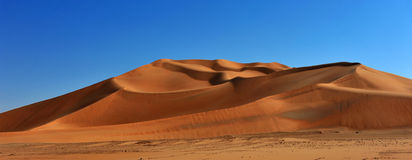 Big dune in Rub al Khali Royalty Free Stock Photography