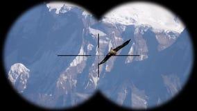 Big eagle bird flying over Himalayan mountain range seen through binoculars. Bird watching at wildlife safari. Shot with a Sony RX10 IV fps 59,94 FHD stock video footage