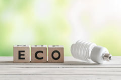 Big eco bulp on a wooden table Stock Images