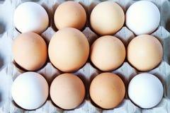 The big egg. A big egg among other eggs stock images