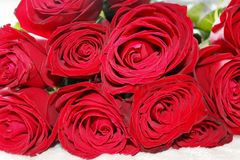 Big elegant red roses bouquet. Photo of an elegant red roses flowers bouquet, symbolizing love and sensuality stock photos