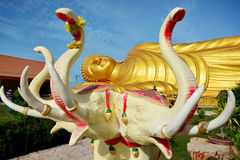 Big elephant statue in front of  The Reclining Buddha gold statue Stock Photography