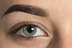 Big eye Eyebrow after correction royalty free stock image