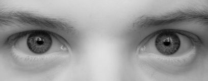 Big eyes close up stock image