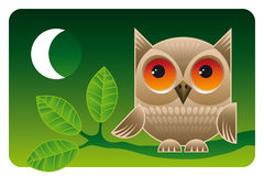 Big eyes. Cute owl sitting on a branch at night vector illustration