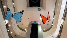 Big fake butterfly in the hall in shopping mall Stock Image