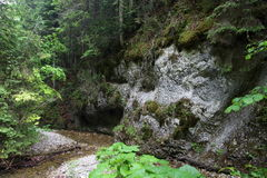Big Falcon ravine, Slovak Paradise, Slovakia Stock Photo