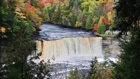 Big Falls in Autumn Forest Loop. Upper Tahquamenon Falls, a very large waterfall in Michigan's Upper Peninsula, here surrounded by fall foliage has waters stock video footage