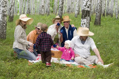 Big family picnic Royalty Free Stock Photography