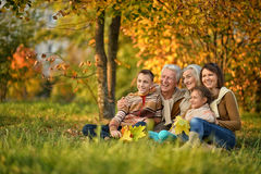 Big family on picnic Royalty Free Stock Photos
