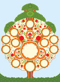 Big Family Tree. The stylised tree with a place for photos of members family royalty free illustration