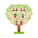 Big family tree with happy people icons. Big family tree template concept with people icons for life generations history. Includes kids, parents and grandparents stock illustration