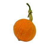 Big Fancy yellow pumpkin Stock Image