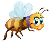A big fat bee. Illustration of a big fat bee on a white background Stock Images