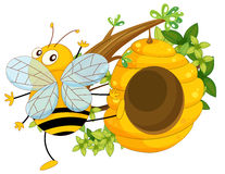 A big fat bee near the beehive Royalty Free Stock Image