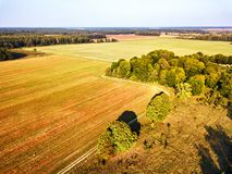 Big field after harvest aerial view. Autumn woods royalty free stock photos