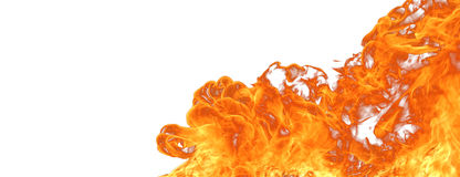 Big Fire. Isolated fire flame on white background stock photos