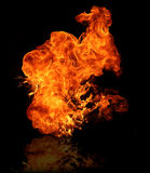 Big Fire. Isolated fire flame on black background with reflection Stock Photography