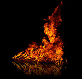 Big Fire. Isolated fire flame on black background with reflection Stock Photos