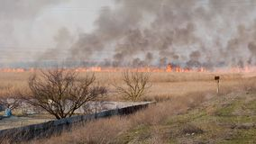 Big fire in the field blown by a strong wind, Ukraine. Slow motion stock footage