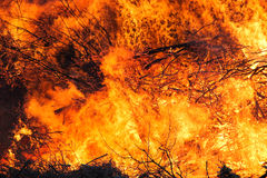 Big fire, red and orange inferno. Big inferno, red and orange flames everywhere Stock Photo