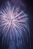 Big fireworks during the celebrations Stock Photography