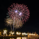 Big fireworks in the sky over a parks Royalty Free Stock Photo
