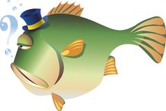 Big fish. A big gloomy fish is thinking Royalty Free Stock Image
