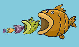 Big fish cycle. Fish cycle, Sea life , big fish and squid Royalty Free Stock Image