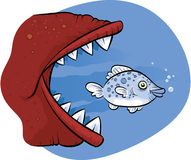 Big Fish Eating Little Fish. A cartoon fish about to be eaten by a much larger fish Royalty Free Stock Photo