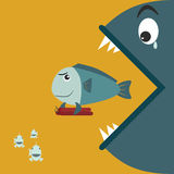 Big fish eating a small fish. At the holding bomb Royalty Free Stock Photography