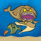 Big fish eats small. Cartoon illustration Royalty Free Stock Image