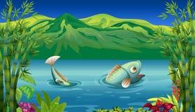 A big fish at the lake. Illustration of a big fish at the lake Stock Photos